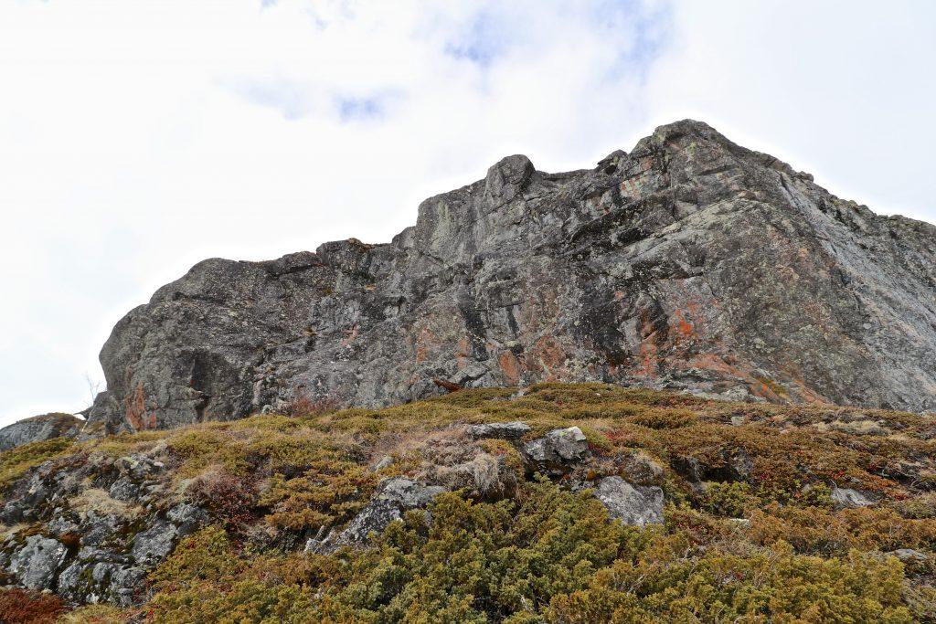 Innsteget og starten på ryggen av Knutshø er ikke krevende, men det gjelder å finne enkleste vei.