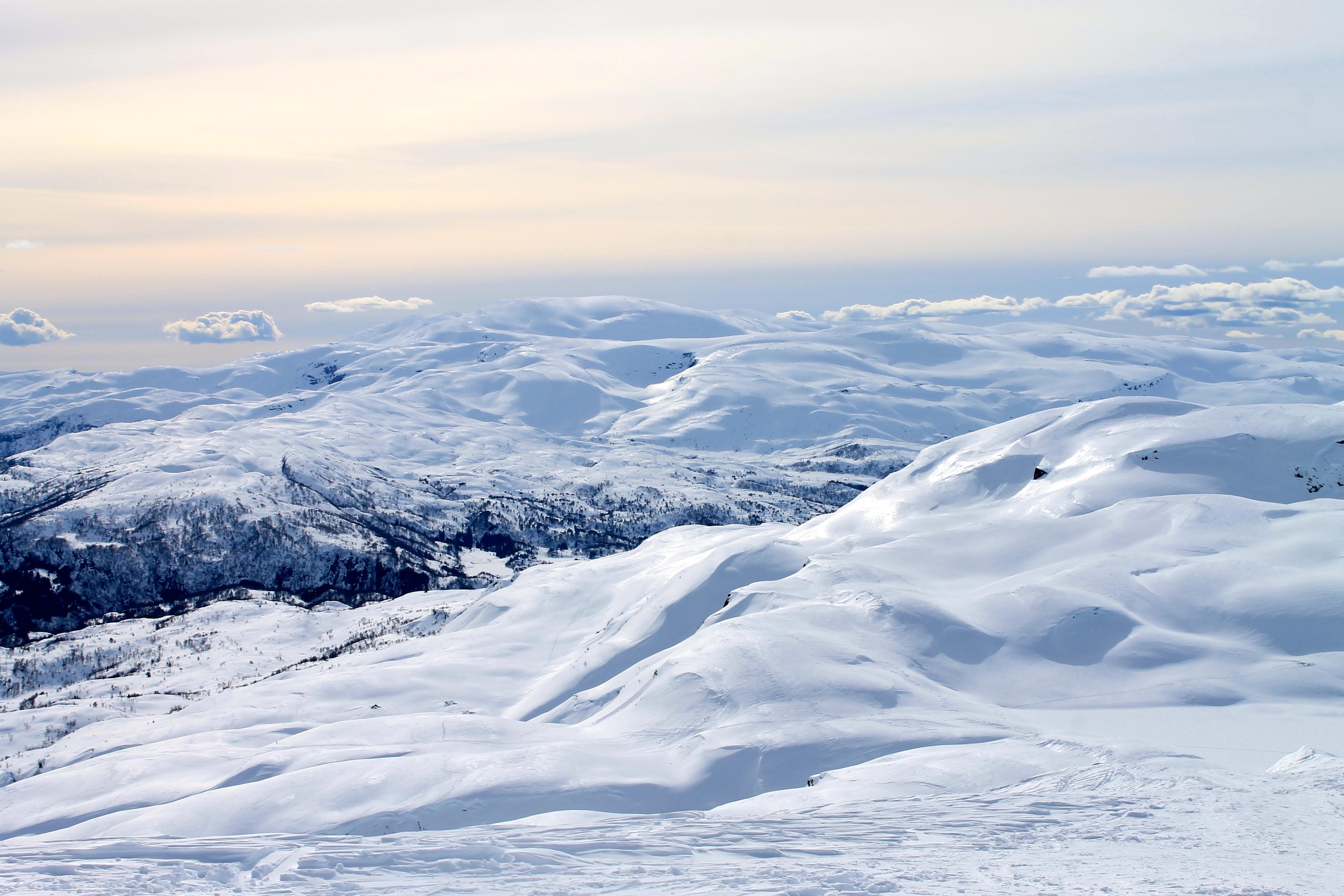 Tveitakvitingen (1.299 moh) bak i bildet sett fra Torefjell.