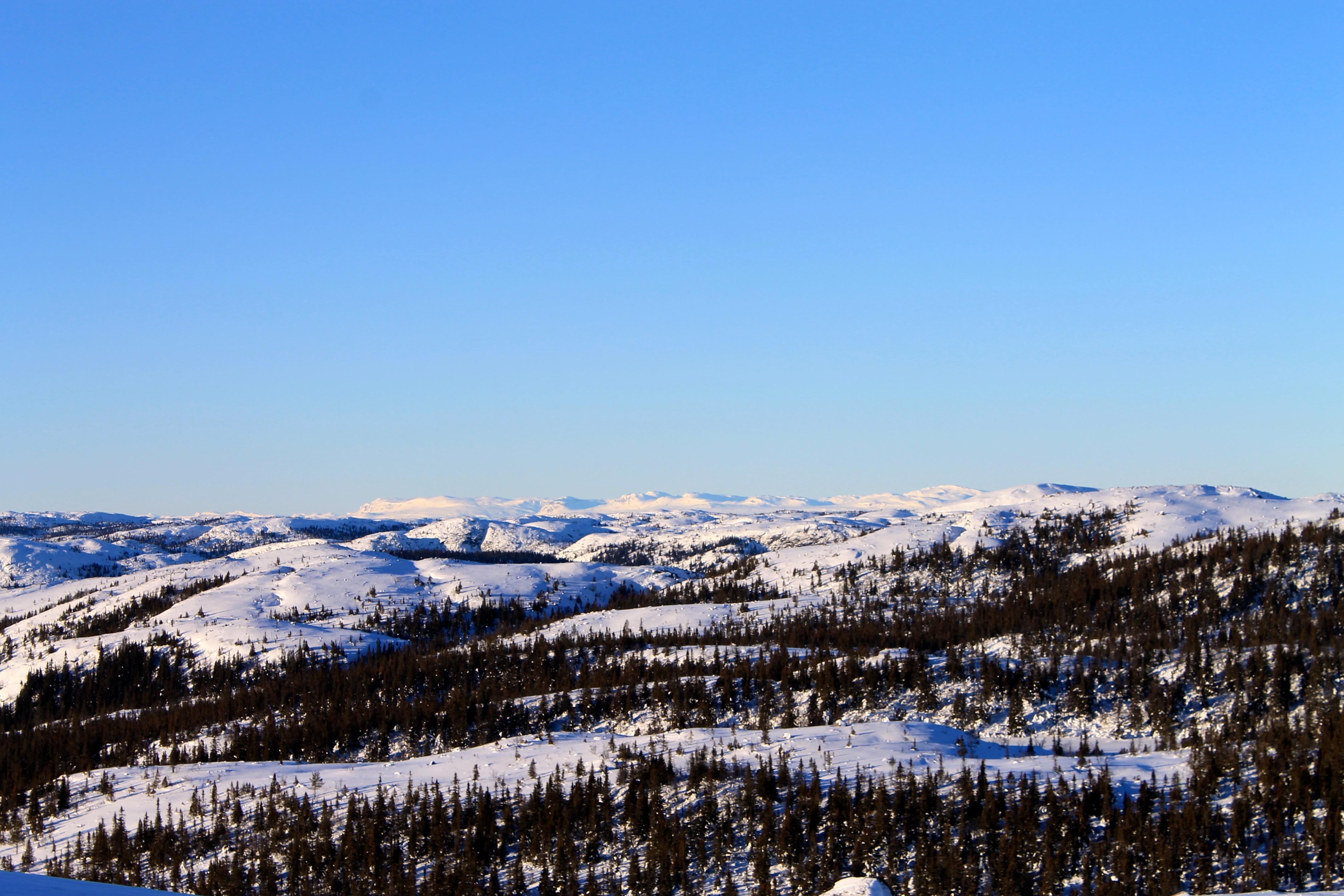 Utsikt mot Hallingskarevt, Golsfjella og Hemsedalsfjella.