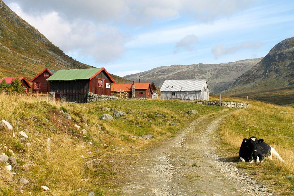 Idyll ved Slettedalen støl, som vi passerer på turen til Bakkanosi.