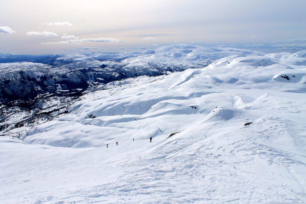 Fra Torefjell kan en gå på ski inn mot Kvamskogen platået.