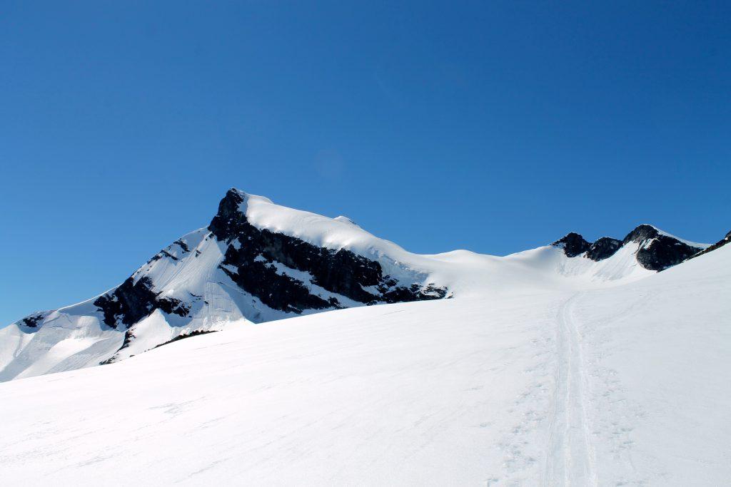 Mot toppen av Storebjørn (2.222 moh).
