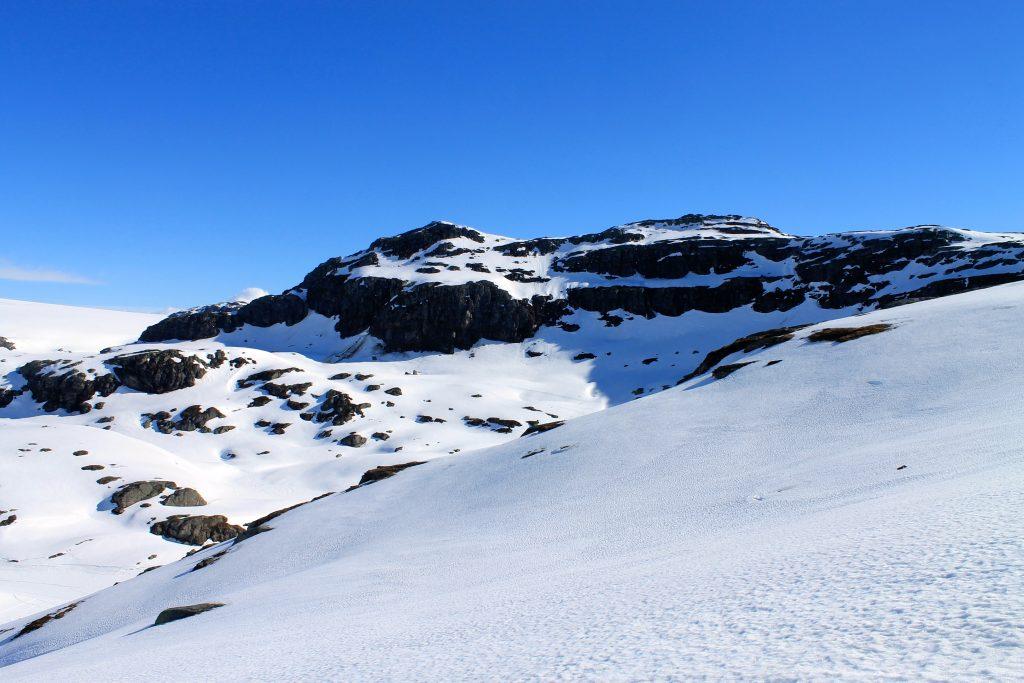 Sauanuten (1.408 moh) sørøst for Folgefonna er et fint utsiktspunkt.