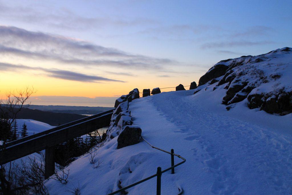 På vei opp mot Rundemanen  (568 moh) fra Brushytten.
