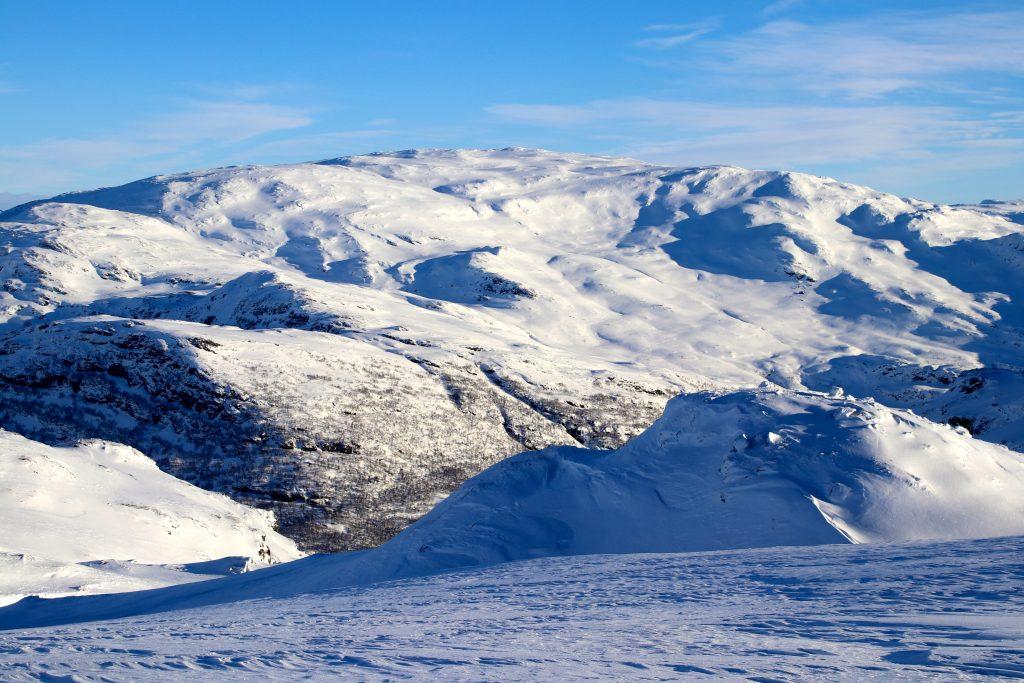 Tarven (1.703 moh) er lettest tilgjengelig fra Vatnahalsen og Myrdal.
