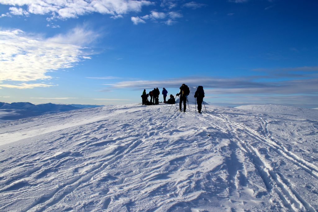 Toppen av Fossdalsskavlen (1.551 moh).