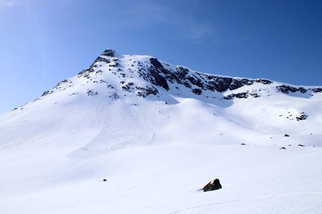 Blånebba sett fra oppstigningen fra Venjesdalen.