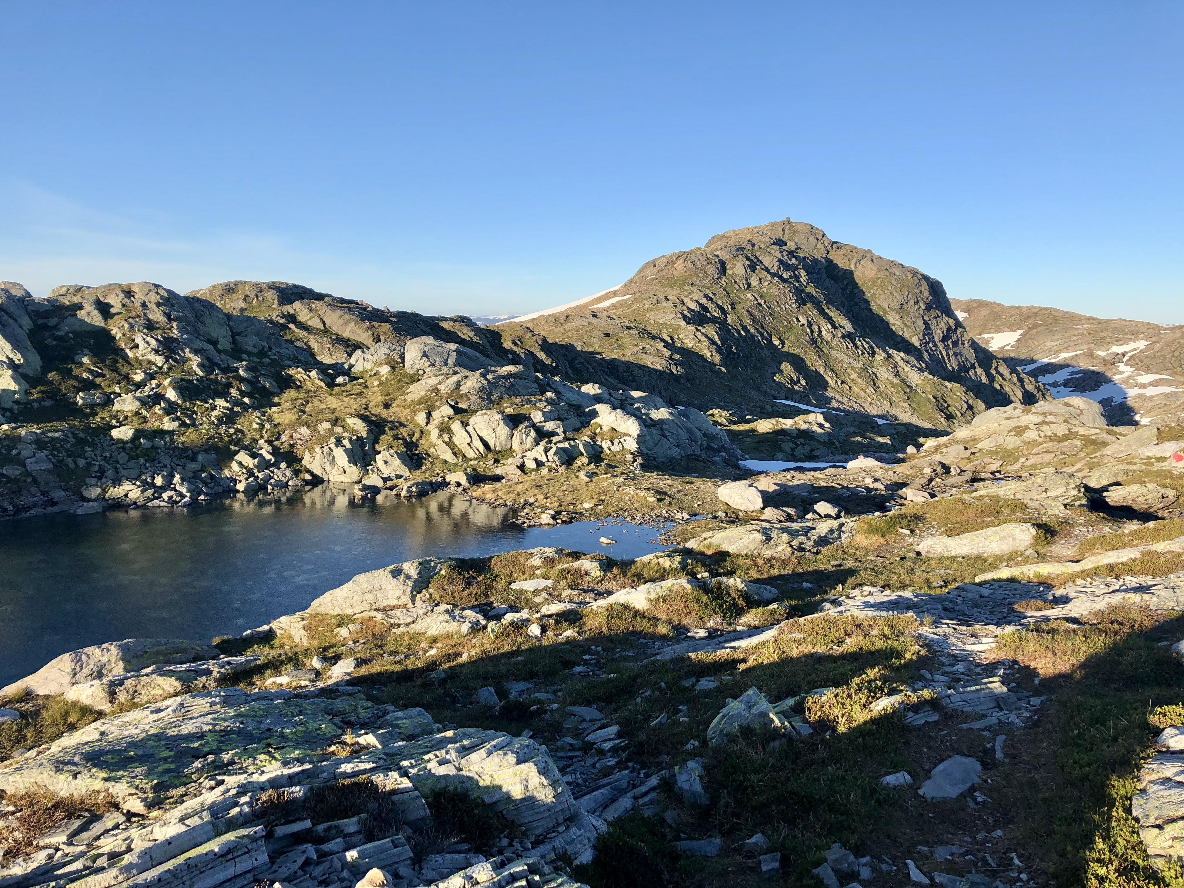 Toppen av Blånipa (1.021 moh) i Flora.