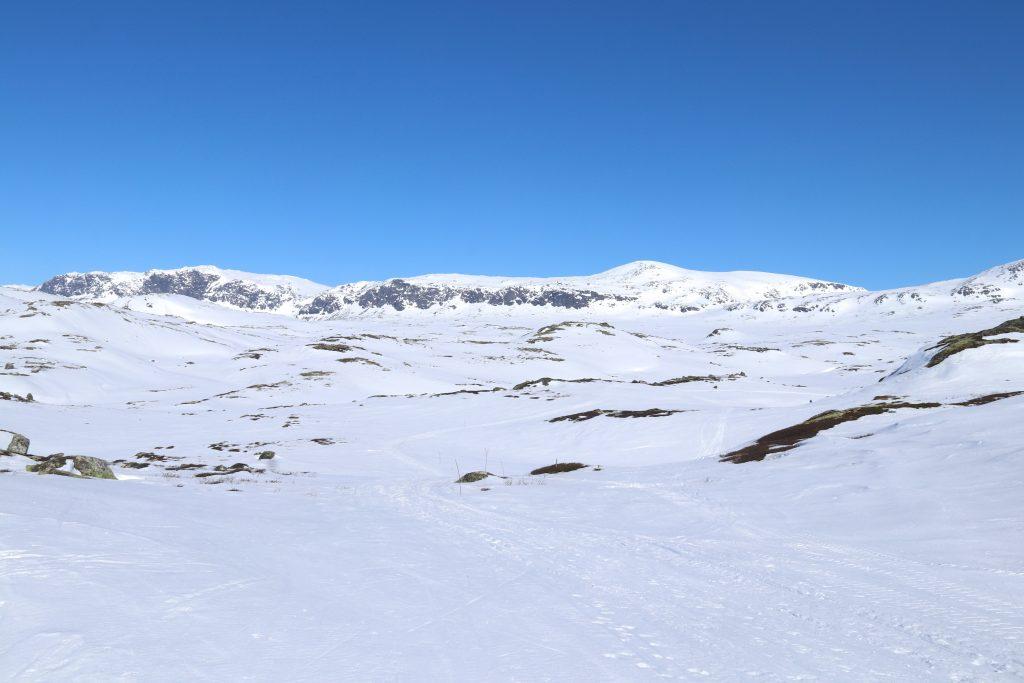 Kvistet løype mellom Haugastøl og Folarskardet til Raggsteindalen.