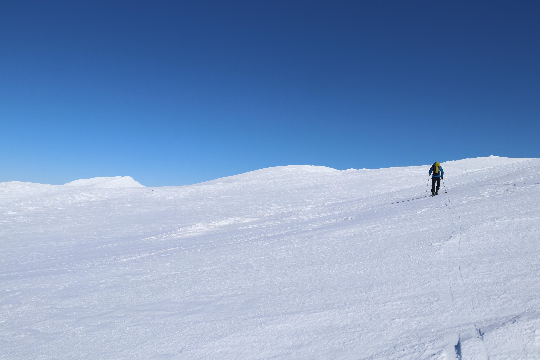 Siste stykket opp mot toppen av Høgeloft.