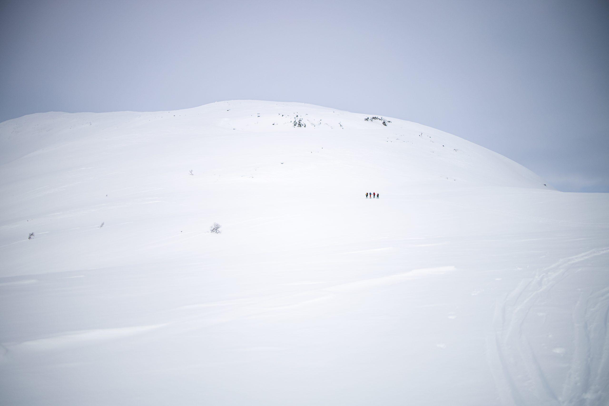 Normalruten opp sør-ryggen til toppen av Brekkenipa.
