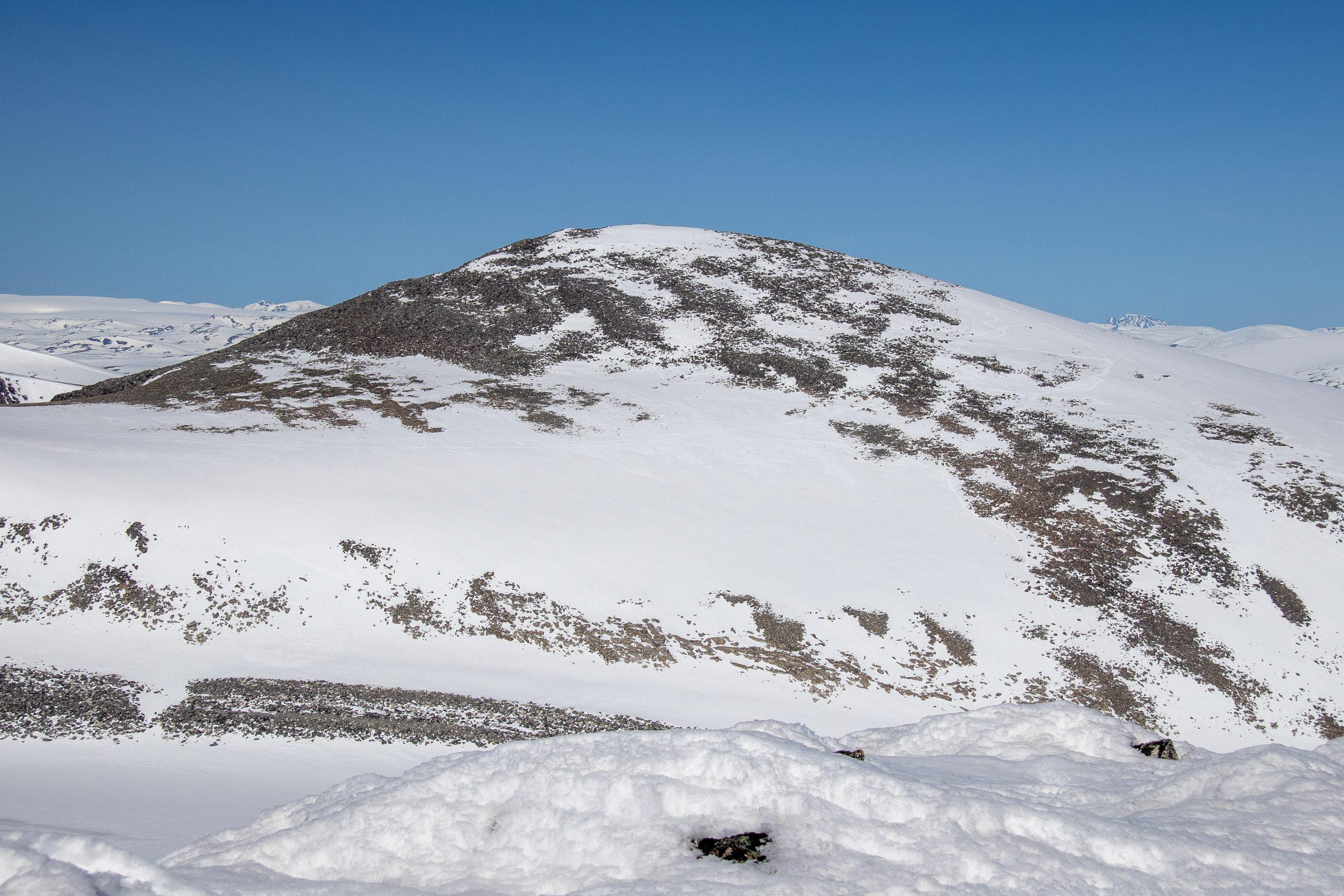 Nørdre Hestbreapiggen (2.172 moh) er den høyeste toppen i Hestbreapiggmassivet.
