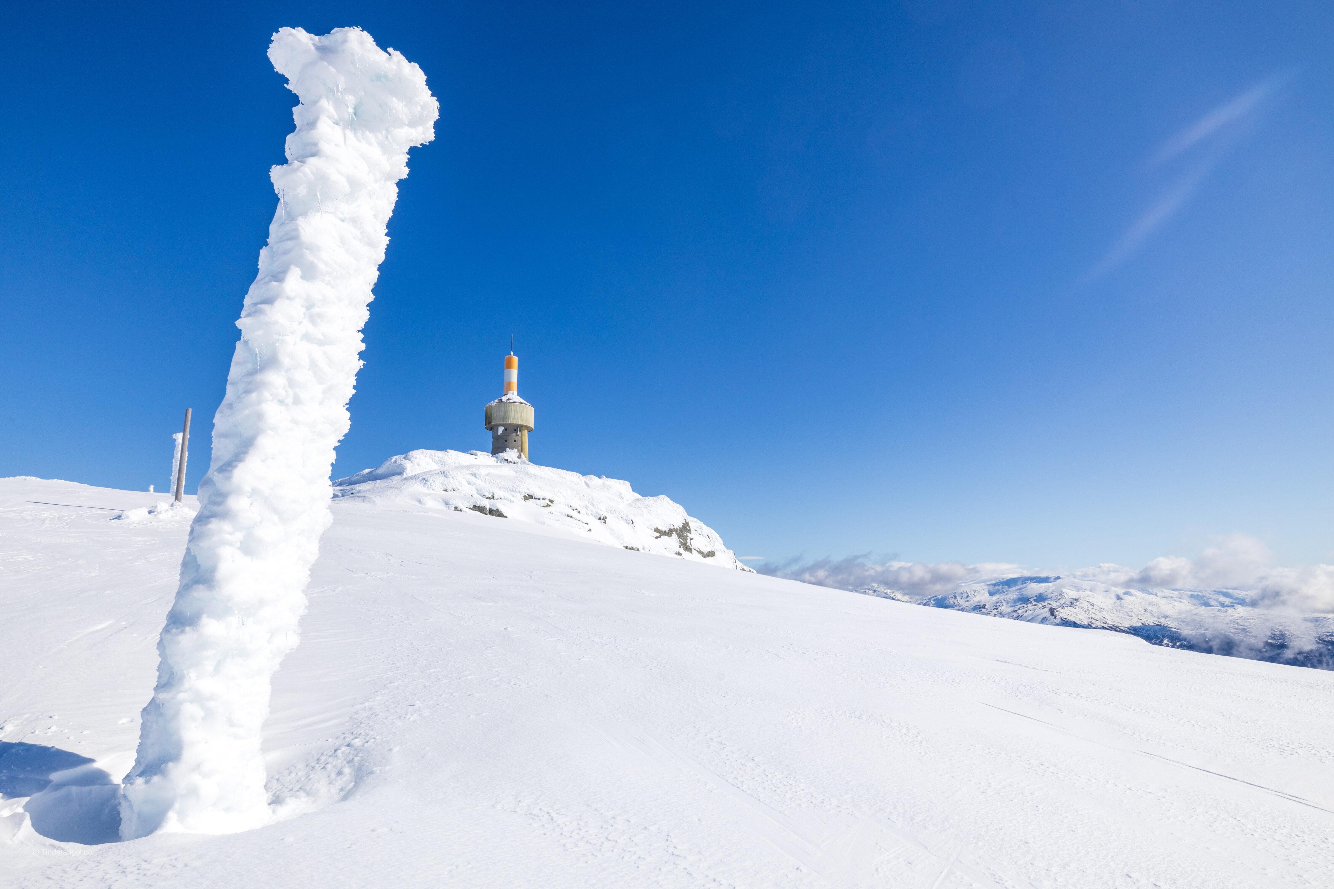 Siste strekket langs sørvestryggen til toppen av Lønahorgi.
