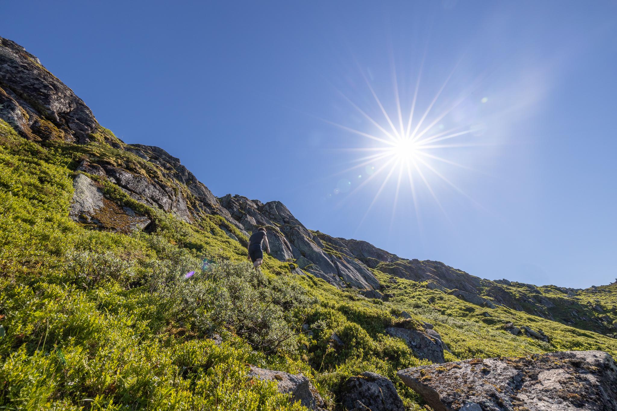På sti opp langs nordryggen til Fløya.