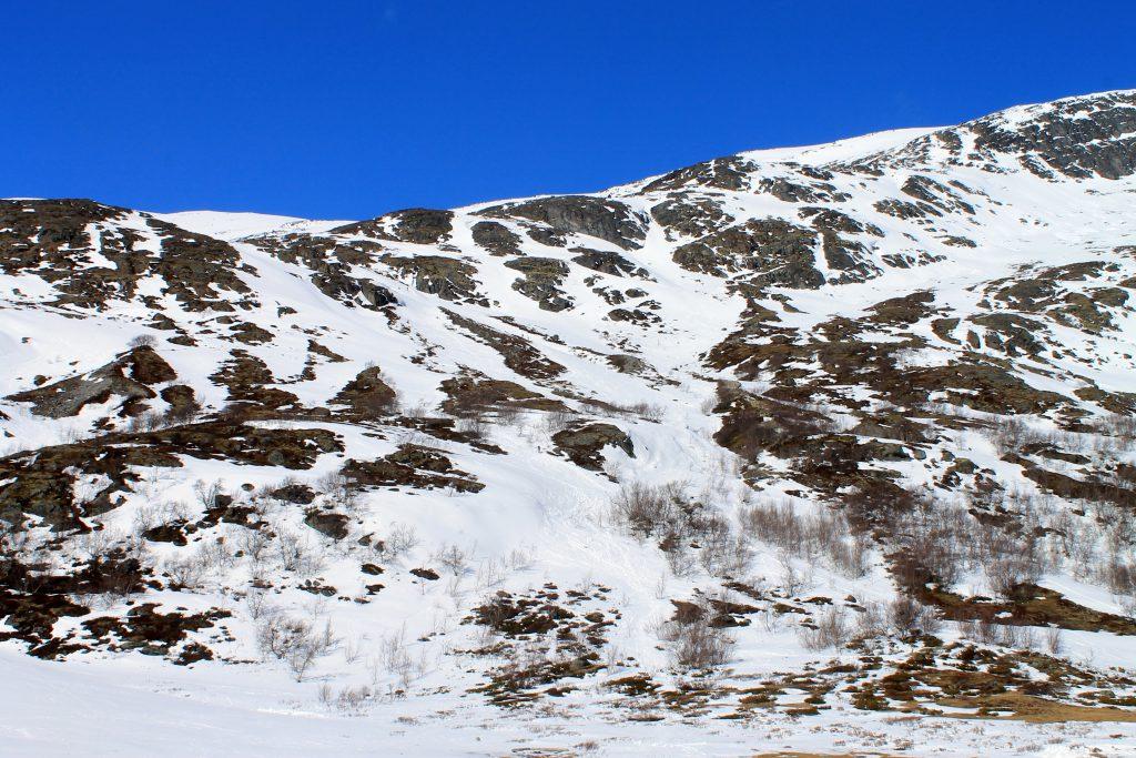Skikjøring ned fra Galdhøpiggen med Visdalen i bakgrunnen.