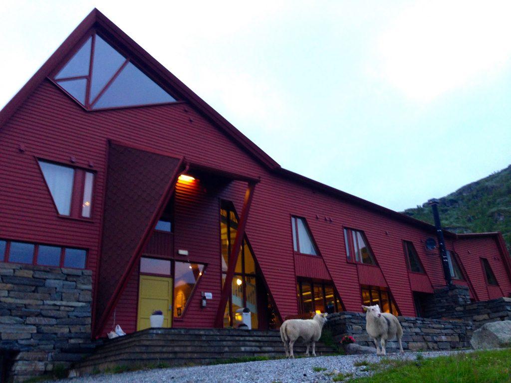 I Hurrungane ligger mange av landets villeste fjell og turen starter ofte fra Turtagrø, et populært utgangspunkt for luftige fjellturer siden 1870-årene.