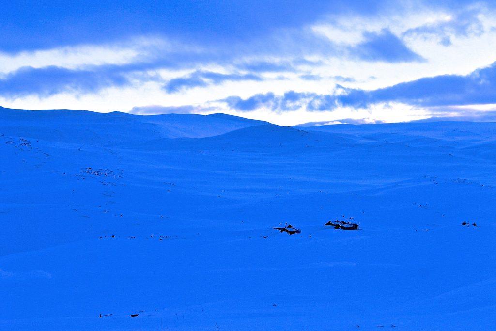 Kjedebu er en av DNT´s selvbetjente hytter på Hardangervidda.