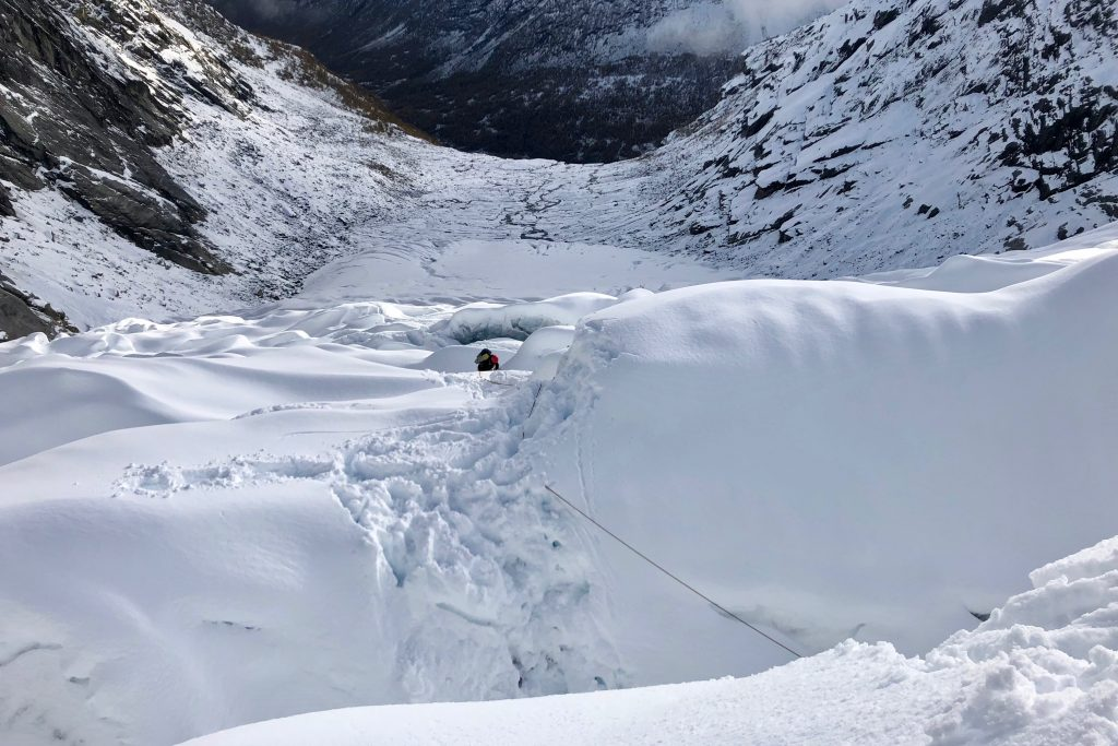 Tomanns-taulag på mellomfornakringer i  snødekt breis på  Tuftebreen.